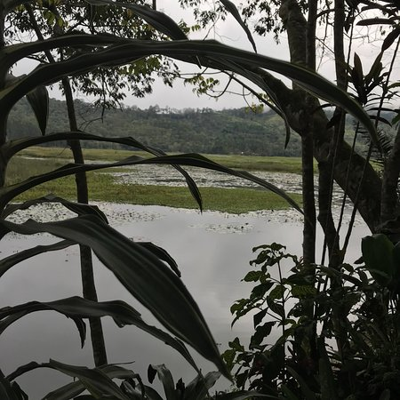 Villa Rica, Peru: photo0.jpg