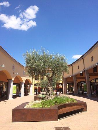 Valdichiana Outlet Village : spiazzo con ulivo