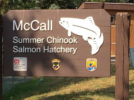 McCall Fish Hatchery