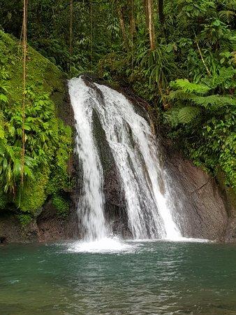 Парк Национальный, Гваделупа: 20180815_081333_large.jpg