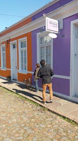 Passarinho - Vivencias Urbanas