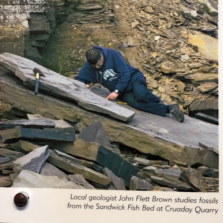 Burray Village, UK: The fish fossil of Orkney are world class. Much of the research undertaken by John Flett Brown.