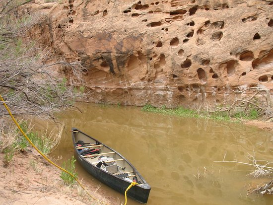 Canoes work best through Labyrinth Canyon! - Picture of Moab