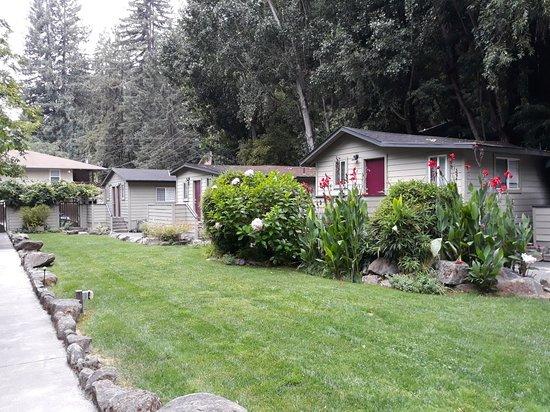 Cottages on River Road: 20180824_095839_large.jpg