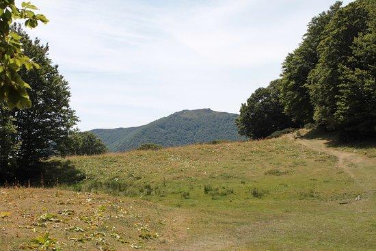 Mandailles-Saint-Julien, Francja: chemin et paysage en allant au Puy de Griou