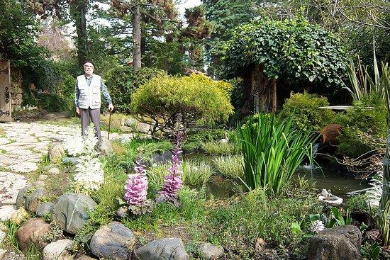 Fitofantaziya Botanical Garden