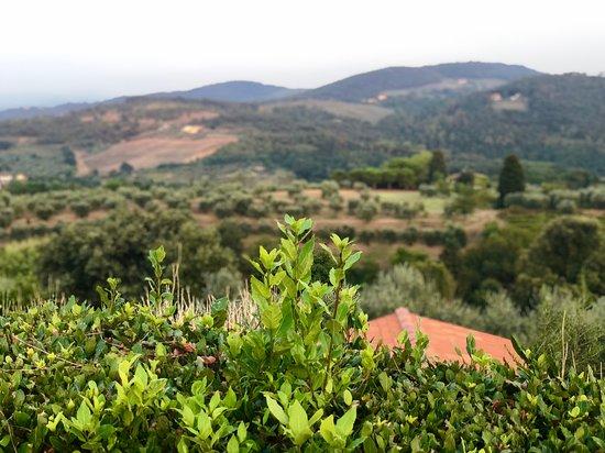 Agriturismo Fattoria Albanese صورة فوتوغرافية