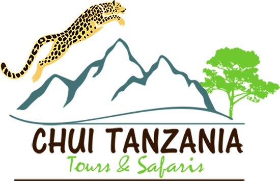 Ngorongoro Conservation Area, Tanzania: chui TZ
