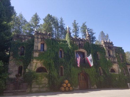 Chateau Montelena: 20180817_111148_large.jpg