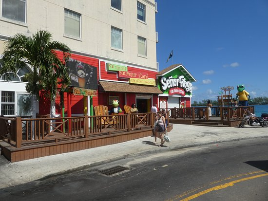 Senor Frog's Nassau: Closed For The Day Only?