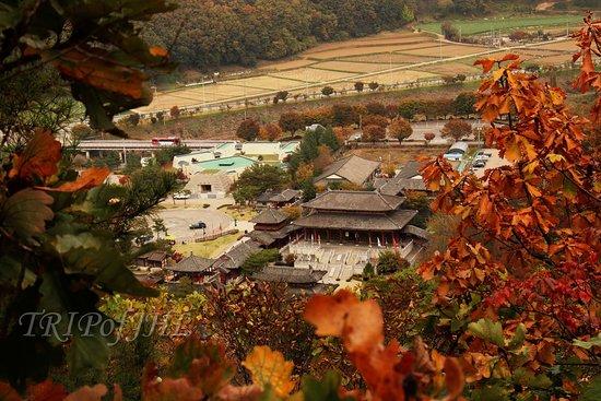 Ondal Gwangwangji