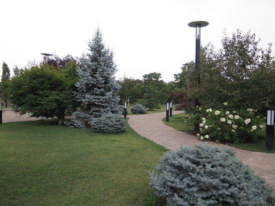 Argun, Russia: парк
