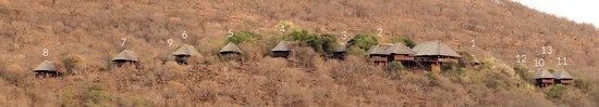 写真Mvubu River Lodge枚