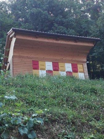 Pri Lazarju: Casa delle api