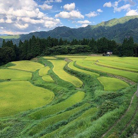 Rice terrace, Mt.Ue