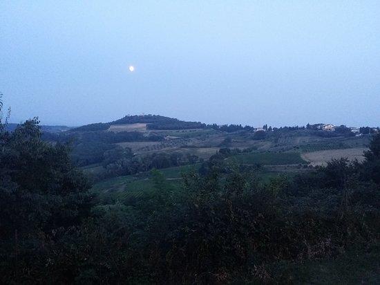 Lucardo Photo