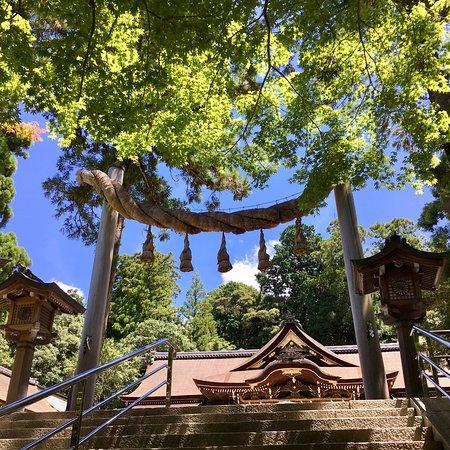 Sakurai, Japan: 大神神社は比較的願いが叶いやすい神社と言われています。