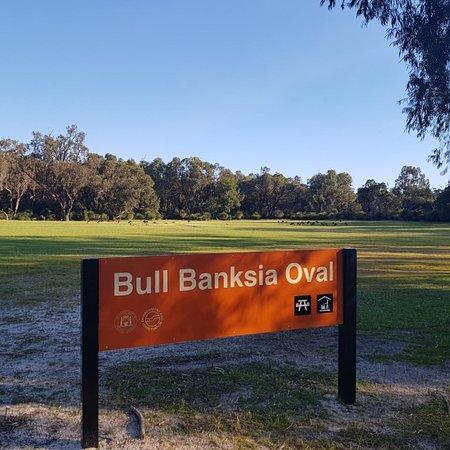 Yanchep, Australia: Un grupo grande estaba en esta parte del parque a las 16:30 hrs