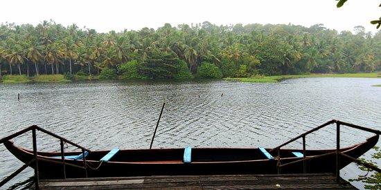 Canoeing at the LLake