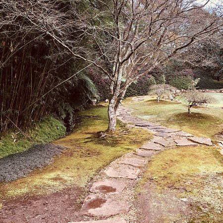 Makaranga Botanical Garden: photo1.jpg