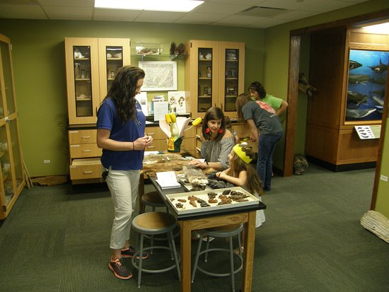 Whiteville, NC: More natural speciments in the Naturalist Center