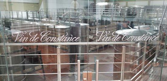 Klein Constantia: Winery