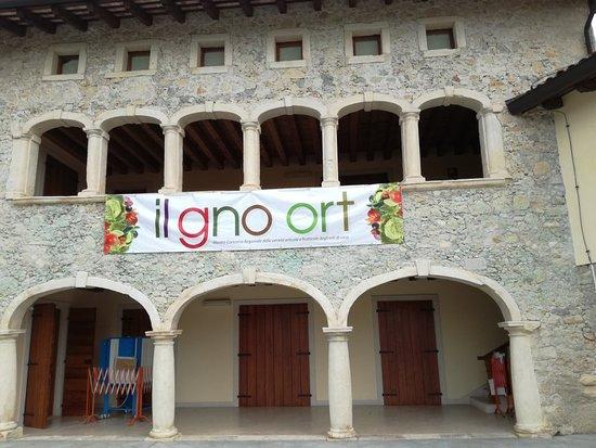 Castelnovo del Friuli, Italy: IMG_20180824_103158_1_large.jpg