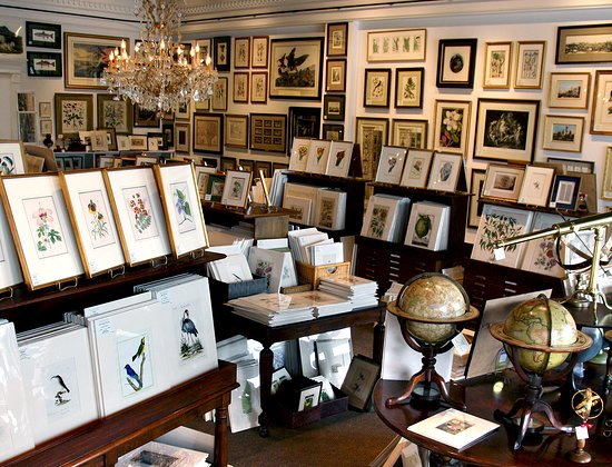 Antiquarium Antique Print Gallery