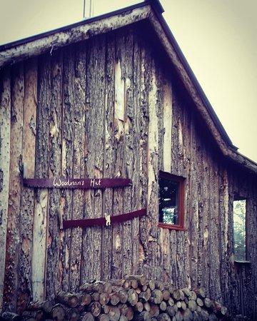 The Lazy Duck: Woodsmans Hut