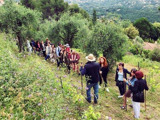 Grasse, France: Visite au milieu des roses et des oliviers