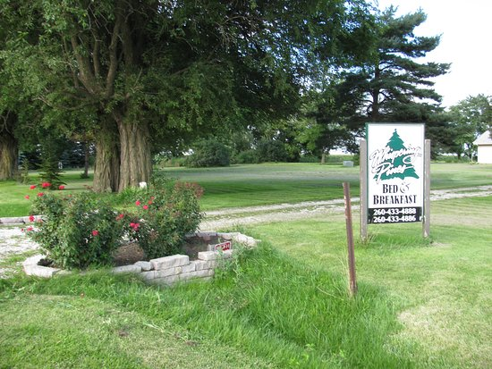 Dwight, IL: Lots of pine trees, quiet and relaxing, rose bushes at driveway entrance.