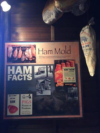 Isle of Wight County Museum: Ham exhibits