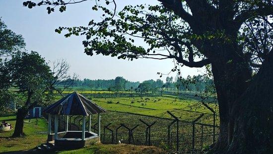Tura, India: Darga of Hazrat Shah Kamal Baba