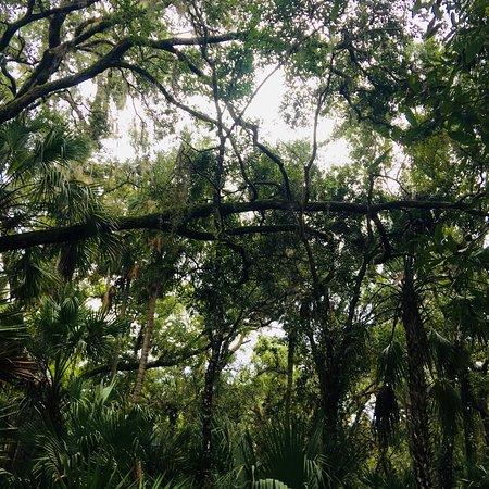 DeLand, فلوريدا: St. Francis Trail