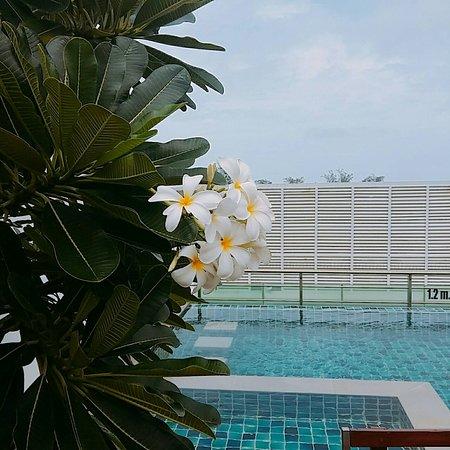 Love pool.