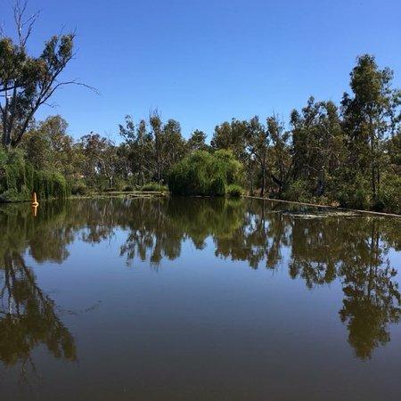 Bridgewater Swimming Hole
