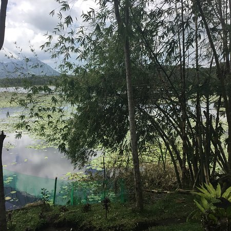 Maguindanao, Philippinen: Marayag Lake is located in Narciso Ramos Highway. Near the boundary between Lanao sur and Maguin