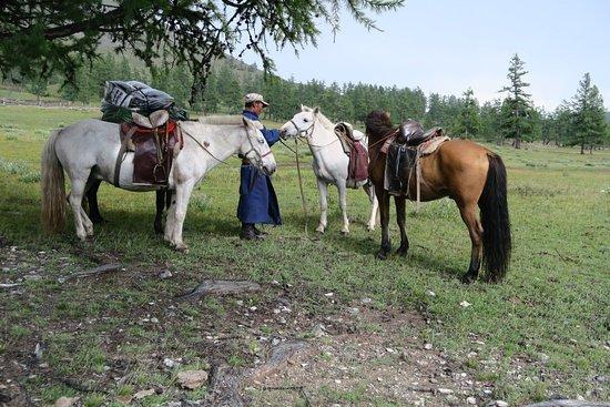 Hatgal, منغوليا: IMG_0318_large.jpg