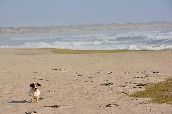 Hentiesbaai, นามิเบีย: Rocket on the Beach