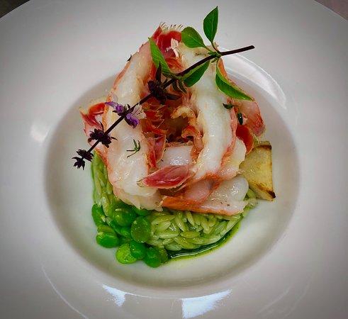 Langoustines, risotto au plancton