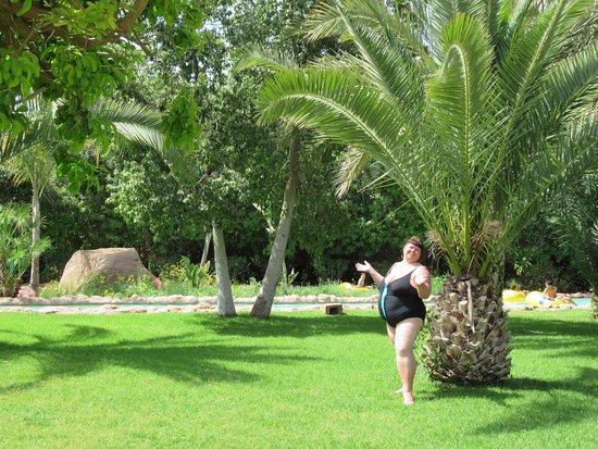 Oasiria Water Park: Под пальмами