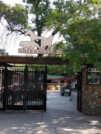2018年 Folsom City Zoo Sanctua...