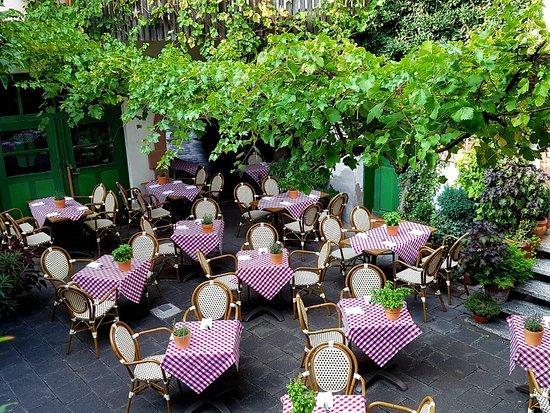 Maintal, Germany: Unser Sommerhof - unter wildem Wein.