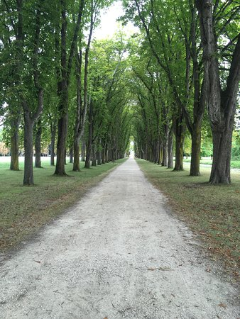 Richelieu, France: One of the paths