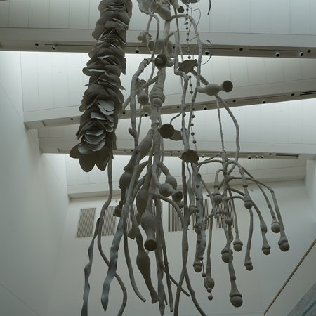 The Blanton Museum of Art: photo0.jpg