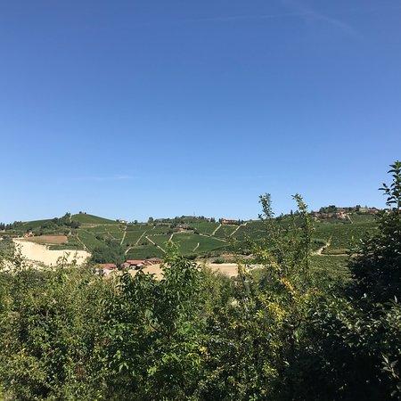 Mango, Włochy: photo1.jpg