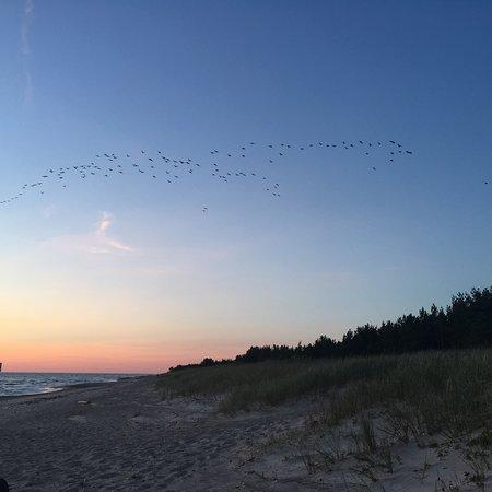Pape, Lettonie: Пляж в Папе чистый, малолюдный. Идеальное место для отдыха с семьей. Место тихое и спокойное.
