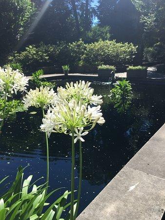 Winterthur, Ντέλαγουερ: Formal gardens were stunning!