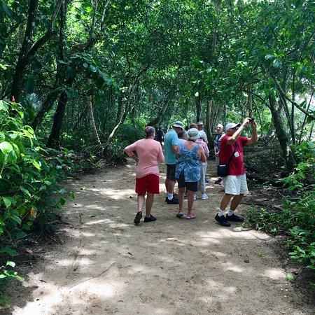 תמונה מPuerto Limon Highlights 6 in 1 Combo Tour. Shore Excursion from Limon