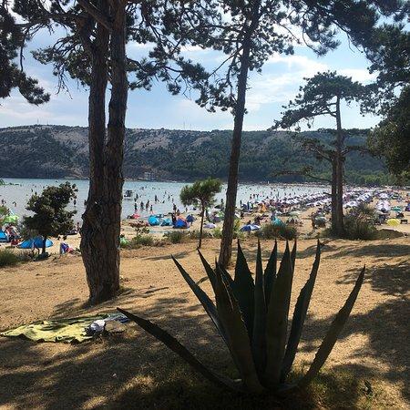 Lopar Beach: photo0.jpg